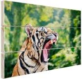 Brullende tijger in het bos Hout 80x60 cm - Foto print op Hout (Wanddecoratie)