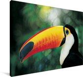 Close-up van de kop van een reuzentoekan Canvas 30x20 cm - klein - Foto print op Canvas schilderij (Wanddecoratie woonkamer / slaapkamer)