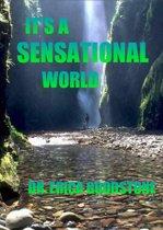 It's A Sensational World