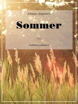 9783941923447 - Steffen Janetzko - Sommer