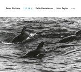 Peter Erskine Trio - Juni