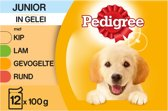 Pedigree Junior - Maaltijdzakjes - 12 x 100 g
