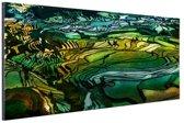 Rijstterras bij Yuanyang China Aluminium 120x80 cm - Foto print op Aluminium (metaal wanddecoratie)