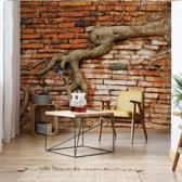 Fotobehang Grunge Brick Wall Texture Tree Roots   VEXL - 208cm x 146cm   130gr/m2 Vlies