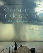 Stilstaan in de storm