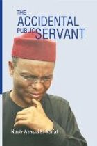 The Accidental Public Servant