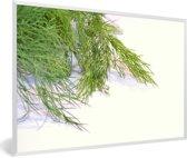 Foto in lijst - Verse dille van de venkel plant fotolijst wit 60x40 cm - Poster in lijst (Wanddecoratie woonkamer / slaapkamer)