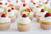 The Cupcake Cookbook - 103 Recipes