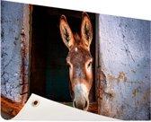 Ezel in de stal Tuinposter 60x40 cm - klein - Tuindoek / Buitencanvas / Schilderijen voor buiten (tuin decoratie)