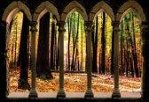 Fotobehang Forest Trees Nature | XXXL - 416cm x 254cm | 130g/m2 Vlies