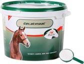 Primeval Gelatinaat Voor Paarden - 2 KG
