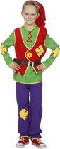 Dwerg & Kabouter Kostuum   Vlijtige Kabouter Lange Muts   Jongen   Maat 128   Carnaval kostuum   Verkleedkleding