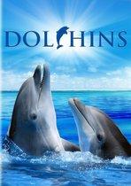 Documentary - Dolphins