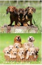 2x Dieren magneten 3D honden