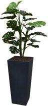 Kunstplant Monstera met sierpot Genesis38 antraciet