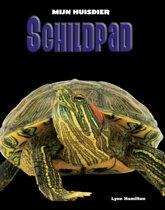 Mijn Huisdier - Schildpad