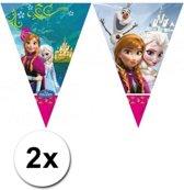 2x Frozen vlaggenlijn / slinger 2 meter