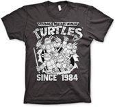TMNT - T-Shirt Distressed Since 1984 - D.Grey (XL)
