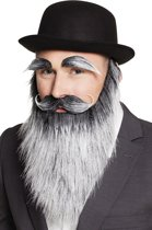 Oude man set met wenkbrauwen, baard en snor