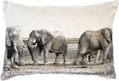 groot kussen fluweel olifanten grijs