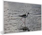 Foto in lijst - Zwarte gevleugelde Kluut in het water fotolijst wit 60x40 cm - Poster in lijst (Wanddecoratie woonkamer / slaapkamer)