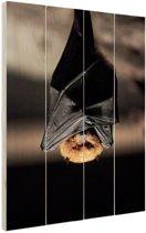 Hangende vleermuis Hout 80x120 cm - Foto print op Hout (Wanddecoratie)
