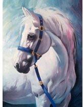Diamond Painting Wit paard