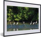 Foto in lijst - Wilde vogels in het water bij het Nationaal park Alas Purwo in Oost-Java fotolijst zwart met witte passe-partout klein 40x30 cm - Poster in lijst (Wanddecoratie woonkamer / slaapkamer)
