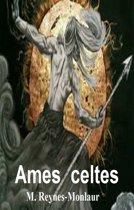 Ames celtes