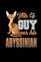 This Guy Loves His Abyssinian
