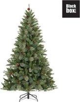 Black Box Trees - Regina kunstkerstboom hoogte 230 cm