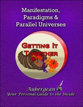Manifestation, Paradigms and Parallel Universes