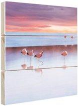 Flamingos bij zonsondergang Hout 30x20 cm - klein - Foto print op Hout (Wanddecoratie)