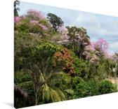 Landschappen bij de Pantanal in Brazilië Canvas 90x60 cm - Foto print op Canvas schilderij (Wanddecoratie woonkamer / slaapkamer)