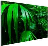 Palmbladeren in de jungle Glas 90x60 cm - Foto print op Glas (Plexiglas wanddecoratie)