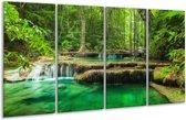 Glasschilderij Natuur   Groen   160x80cm 4Luik   Foto print op Glas    F005994