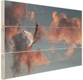 Meeuw bij zonsondergang Hout 60x40 cm - Foto print op Hout (Wanddecoratie)