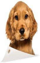 Close-up van een puppy Tuinposter 60x40 cm - klein - Tuindoek / Buitencanvas / Schilderijen voor buiten (tuin decoratie)