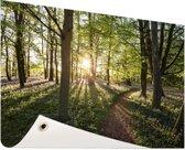 Een bospad op een zonnige dag Tuinposter 120x80 cm - Tuindoek / Buitencanvas / Schilderijen voor buiten (tuin decoratie)
