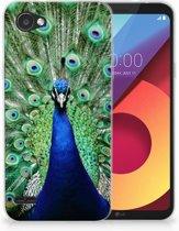 LG Q6   LG Q6 Plus TPU Hoesje Design Pauw