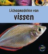 Onder de loep - Lichaamsdelen van vissen