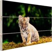 Tijgerwelp in het bos Hout 60x40 cm - Foto print op Hout (Wanddecoratie)