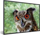 Foto in lijst - Een oehoe met feloranje ogen fotolijst zwart 40x30 cm - Poster in lijst (Wanddecoratie woonkamer / slaapkamer)