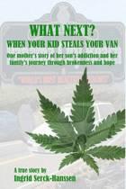 What Next? When Your Kid Steals Your Van