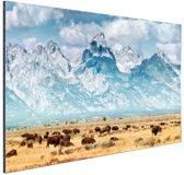 Grand Teton Mountains Amerika Aluminium 90x60 cm - Foto print op Aluminium (metaal wanddecoratie)