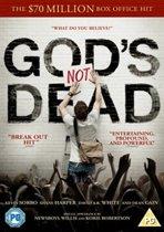 God'S Not Dead (import) (dvd)