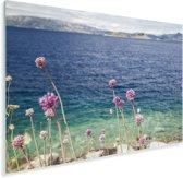 Roze wilde bloemen langs de kust in het Nationaal park Mljet in Kroatië Plexiglas 180x120 cm - Foto print op Glas (Plexiglas wanddecoratie) XXL / Groot formaat!