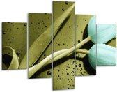 Glasschilderij Tulp | Blauw, Zwart, Groen | 100x70cm 5Luik | Foto print op Glas |  F003768