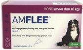 Amflee Spot-on Hond - 402 mg - 6 pipetten