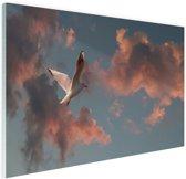 Meeuw bij zonsondergang Glas 90x60 cm - Foto print op Glas (Plexiglas wanddecoratie)